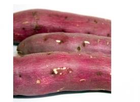 Cartof dulce ecologic