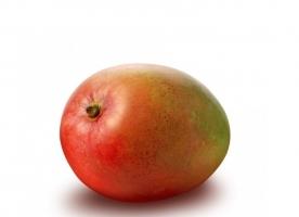 Mango ecologic