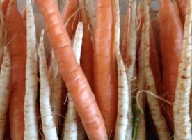 Mini diversificare_morcovei, pastarnac si telina mica eco 300g